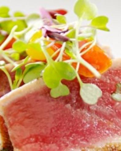 about-spago-tuna